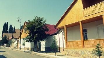 Kieferpanelen so weit das Auge reicht in Helenendorf (Göygöl, AZ)